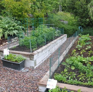 Food Producing Gardens